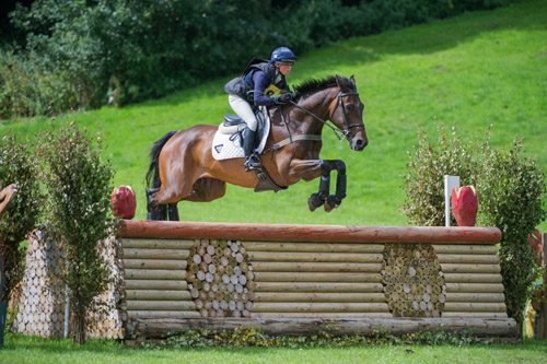 Allstar B at Somerford Park 2013: Photo Trevor Holt