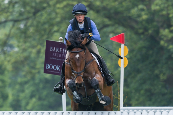 Rehy Royal Diamond | Ros Canter Eventing